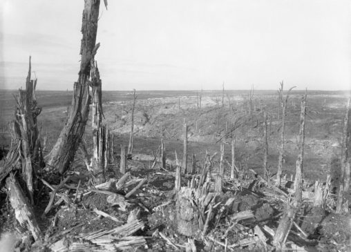 1600px-Beaumont-Hamel_-_General_view_of_the_battlefield